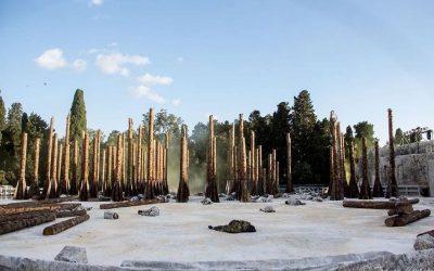 Mille piantine di leccio in Viale Scala Greca