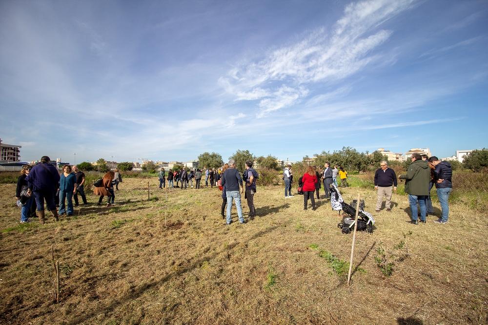 Dal Bosco morto al Bosco delle Troiane: una nuova anima green per Siracusa